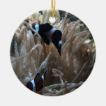 clownfish del geordie ornamento de navidad