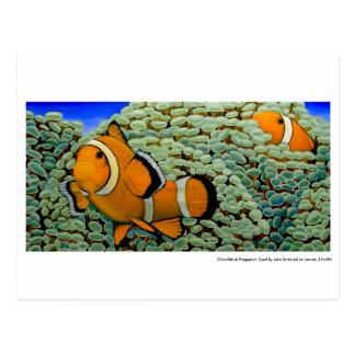 Clownfish en un coral postales