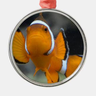 clownfish facing front metal ornament