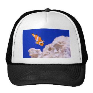 Clownfish Gorros Bordados