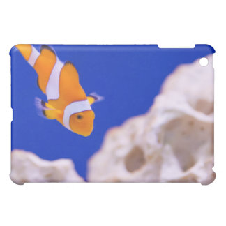 Clownfish iPad Mini Case