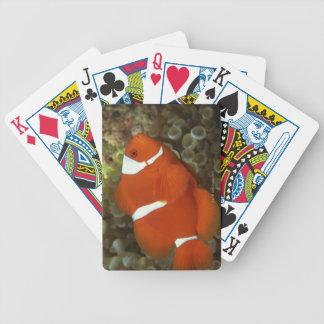 Clownfish marrón con la anémona de mar cartas de juego