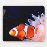 clownfish Mousepad Alfombrillas De Ratones
