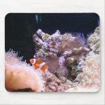 clownfish Mousepad Tapete De Ratón