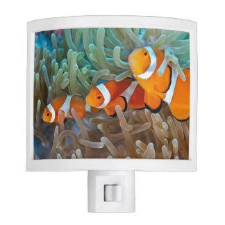 Clownfish Night Light