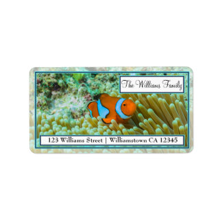 Clownfish on the Great Barrier Reef Address Labels