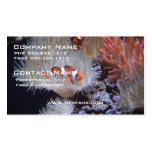 Clownfish Plantilla De Tarjeta Personal