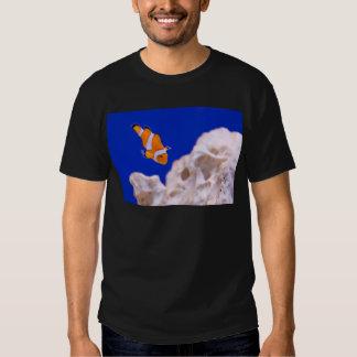 Clownfish Playeras