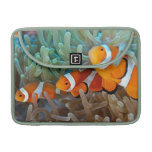 Clownfish Sleeve For MacBook Pro