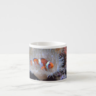 Clownfish Espresso Mugs