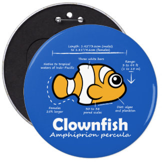 Clownfish Statistics Button