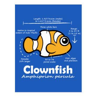 Clownfish Statistics Post Cards