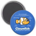 Clownfish Statistics Refrigerator Magnet