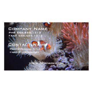 Clownfish Tarjetas De Visita