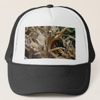 Clownfish Trucker Hat