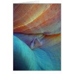 Clownfish y anémona - tarjeta