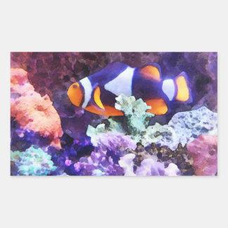 Clownfish y coral rectangular pegatina