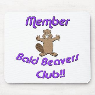Club calvo de los castores del miembro tapete de raton