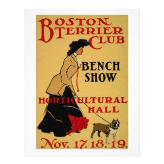 "Club de Boston Terrier Folleto 8.5"" X 11"""