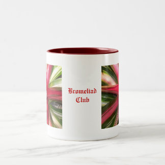 Club de Bromeliad Taza De Dos Tonos