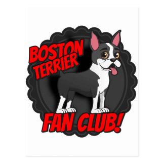 Club de fans de Boston Terrier Tarjeta Postal