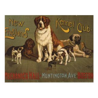 Club de la perrera de Nueva Inglaterra Postales
