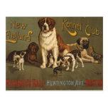 Club de la perrera de Nueva Inglaterra Tarjetas Postales