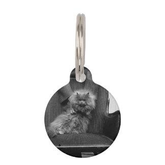 Club del gato de la exposición - Mondial 493 Identificador Para Mascotas
