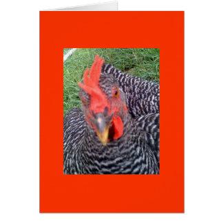 Cluckers afortunado tarjeta de felicitación
