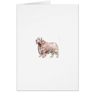 Clumber Spaniel Card