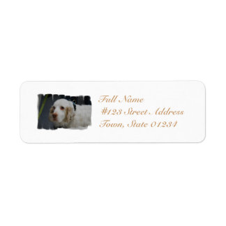 Clumber Spaniel Dog Mailing Labels