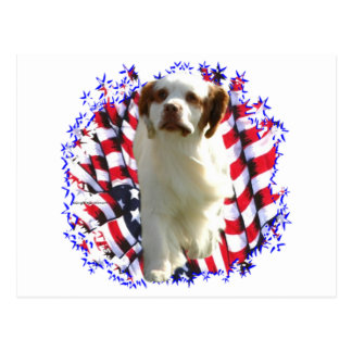 Clumber Spaniel Patriot Post Cards