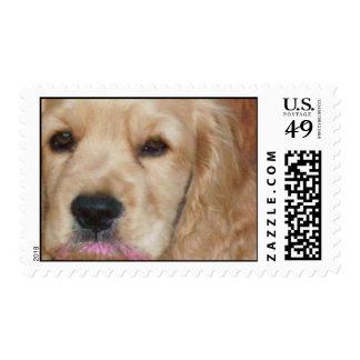 Clumber Spaniel Postage Stamp