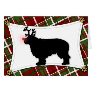 Clumber Spaniel Reindeer Christmas Card