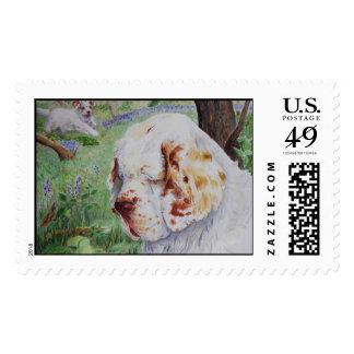 Clumber Spaniel - Spring Woodland postage