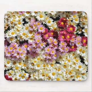 Clump of chrysanthemums mouse pad
