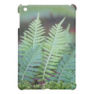 Clump of Green Ferns Speck iPad Case