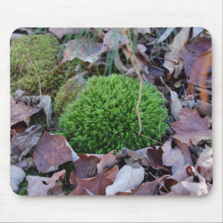 clump of moss on the ground mouse pad