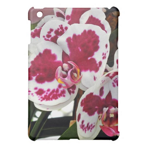 Cluster Gorgeous Velvety White and Purple Orchids Case For The iPad Mini