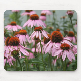 Cluster of Coneflowers Mousepad