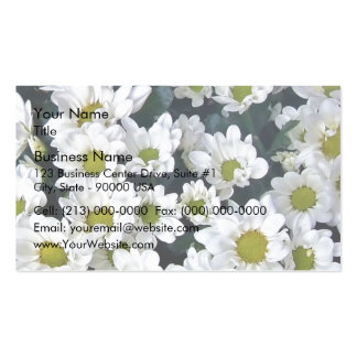 Cluster of fresh white Daisies Business Card Templates