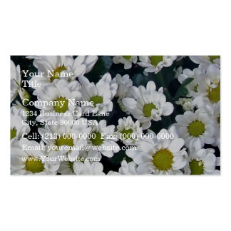 Cluster of fresh white Daisies Business Card Template