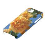 Cluster of Golden Bougainvillea iPhone SE/5/5s Case