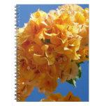 Cluster of Golden Bougainvillea Notebook