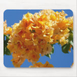 Cluster of Golden Bougainvillea Tropical Flowers Mouse Pad