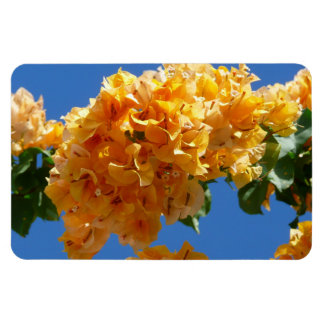 Cluster of Golden Bougainvillea Tropical Flowers Rectangular Photo Magnet