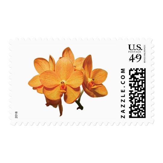 Cluster of Orange Orchids Postage
