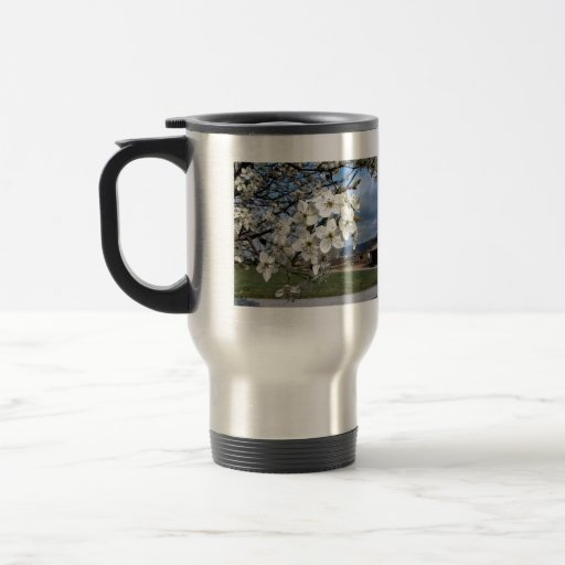 Cluster of Pear Tree flowers blossoming on a sunny Mug