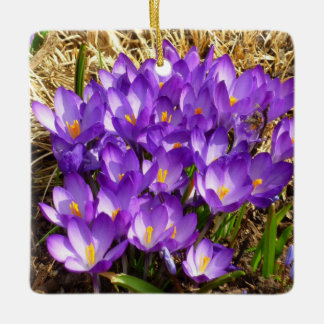 Cluster of Purple Crocuses Early Spring Flowers Ceramic Ornament