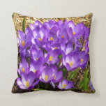 Cluster of Purple Crocuses Early Spring Flowers Throw Pillow